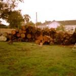 salvaged-wood-07