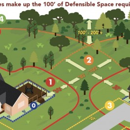 Cover Your Zones in Defensible-Space